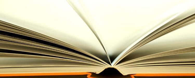 Seemann Publishing Autorenblog